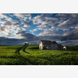 Homestead Print, Palouse, Washington