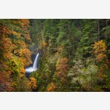 Metlako Falls In Autumn Print, Columbia River Gorge, Oregon