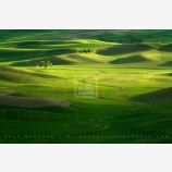 Pure Sunlight Print, Palouse, Washington
