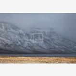 Winter Coat 2, Hart Mountain, Oregon