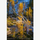 Generations Print, Enchantments, Washington