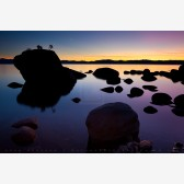 Bonsai Sunset Print, Lake Tahoe, Nevada