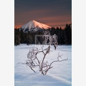 Frost Glow Print, Mt. McLoughlin, Oregon