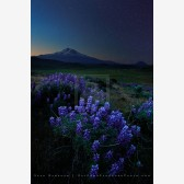 Shadows Call Print, Shasta Valley, Oregon