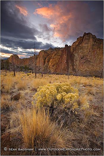 Photo Tip: Foreground, Middleground, Background / Outdoor Exposure ...